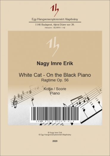 White cat on the black piano